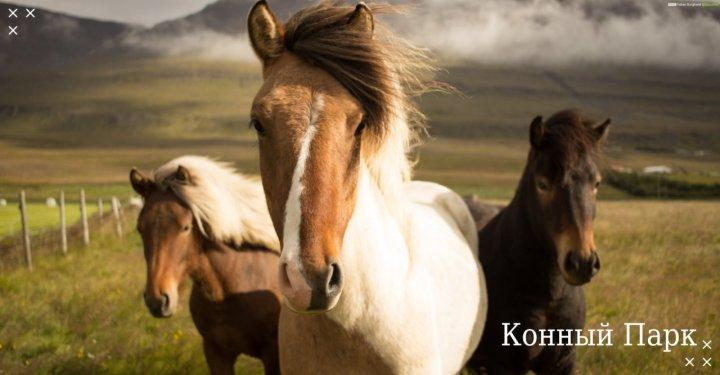 Национальный Конный Парк Русь