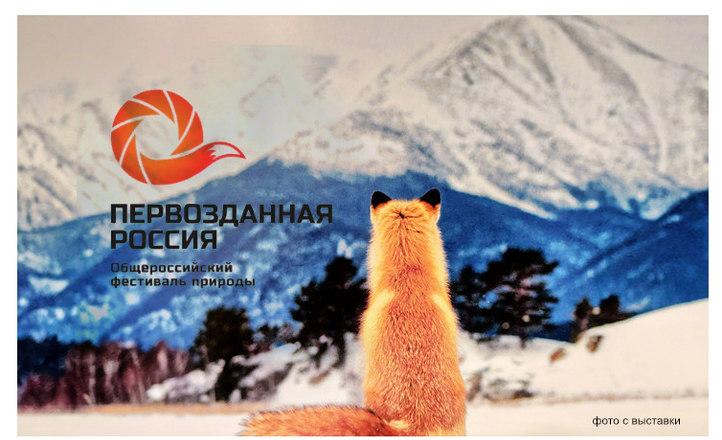 VI Общероссийский фестиваль «Первозданная Россия», мои впечатление от посещения фестиваля