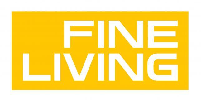 Роскошный ремонт и поиск недвижимости: встречаем новый год с Fine Living